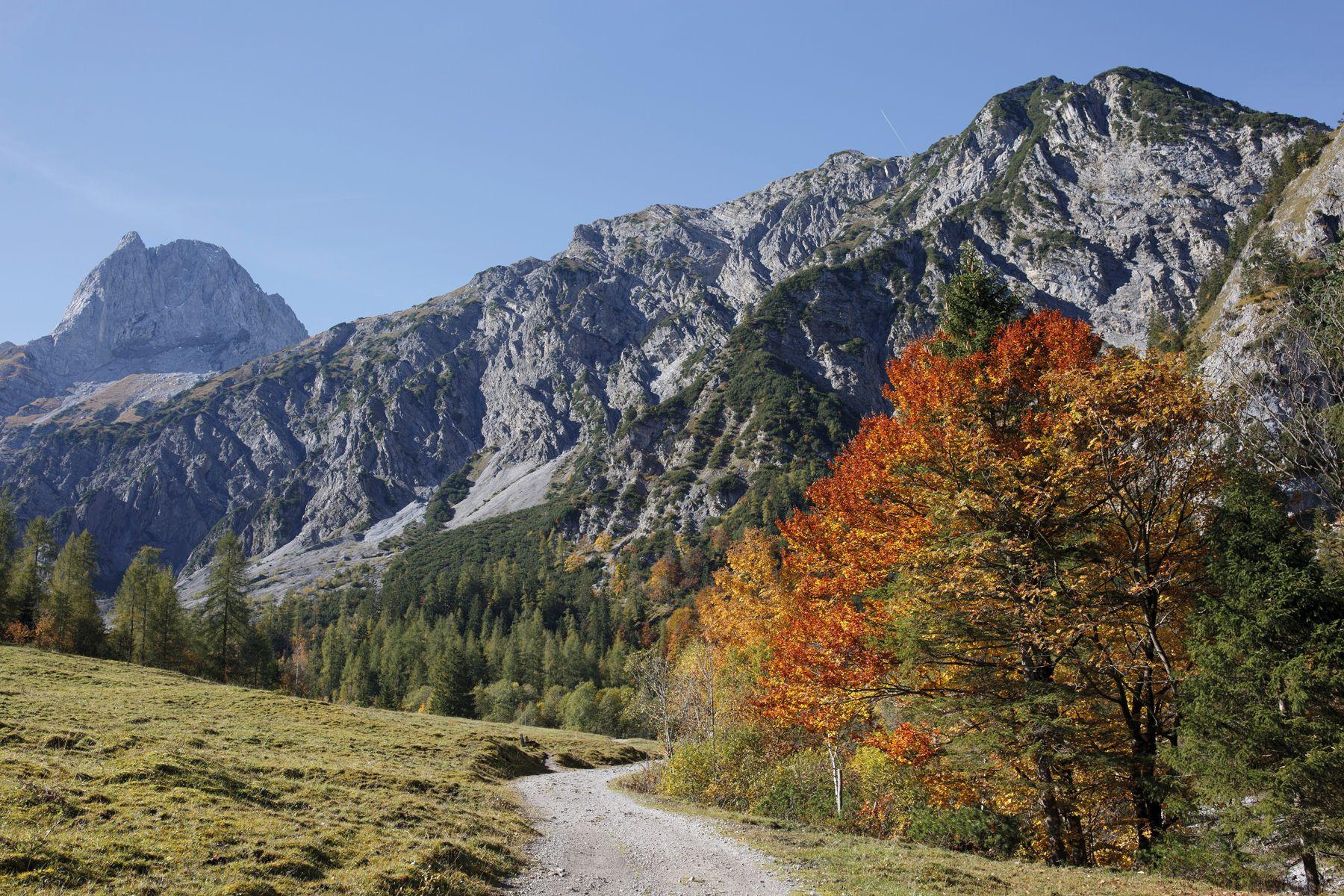 Gramai Alm Pertisau 1146623 Tirol Werbung Rathmayr Michael web